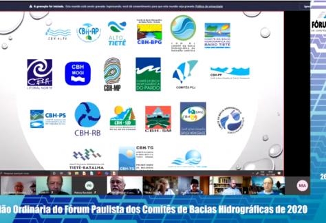 Fórum Paulista de Comitês promove revisão de regimento interno