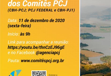 Comitês PCJ apreciam Relatório de Situação dos Recursos Hídricos na região e outras doze deliberações no próximo dia 11